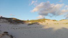Wydmy przy plaży..